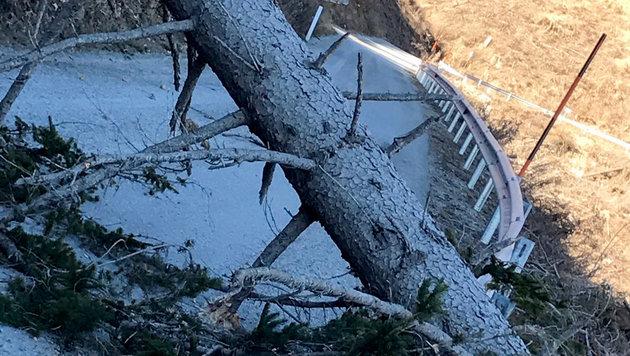 Wintereinbruch: Bis zu 50 Zentimeter Neuschnee (Bild: APA/FEUERWEHREN BFVGU ABSCHNITT 6)