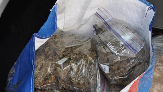 Wiener Parksheriff ließ Drogenbande auffliegen (Bild: APA/LPD)