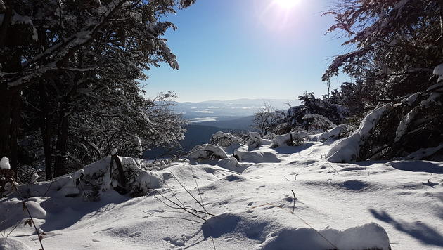 """Die Bergregionen versinken derzeit unter einer bis zu 50 Zentimeter dicken Schneedecke. (Bild: """"Krone""""-Leserreporterin Silvia Piza)"""