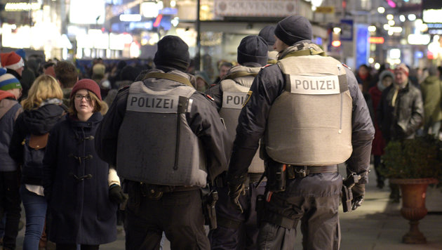 7000 Polizisten stehen zu Silvester im Einsatz (Bild: APA/HANS PUNZ)