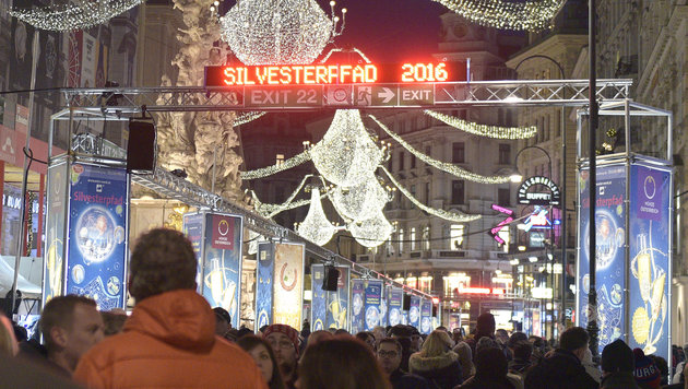 650.000 Gäste feierten am Wiener Silvesterpfad (Bild: APA/HANS PUNZ)