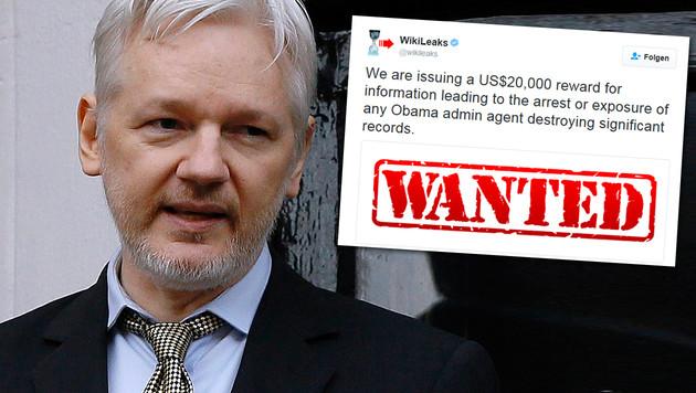 WikiLeaks: Belohnung für Infos aus dem Weißen Haus (Bild: AP, Twitter, krone.at-Grafik)