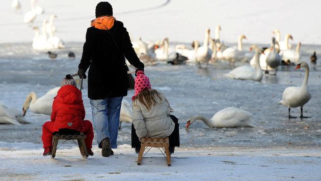 Neun wirkungsvolle Tipps gegen die klirrende Kälte (Bild: dpa/Britta Pedersen)