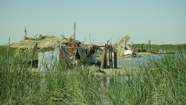 Behausungen im Sumpfgebiet (Bild: Clemens Zavarsky)
