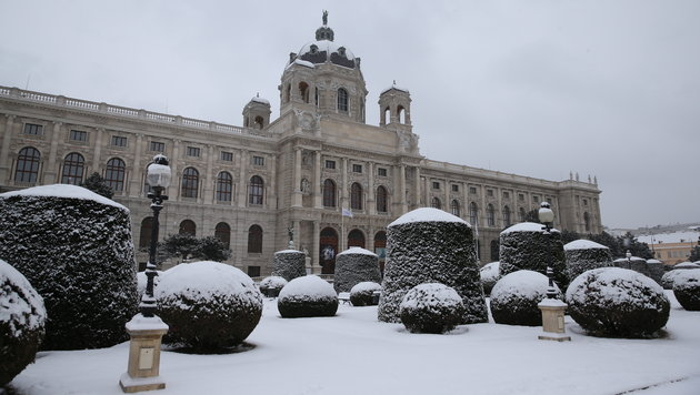 Extreme Kälte weicht nun dichtem Schneetreiben (Bild: zwefo)