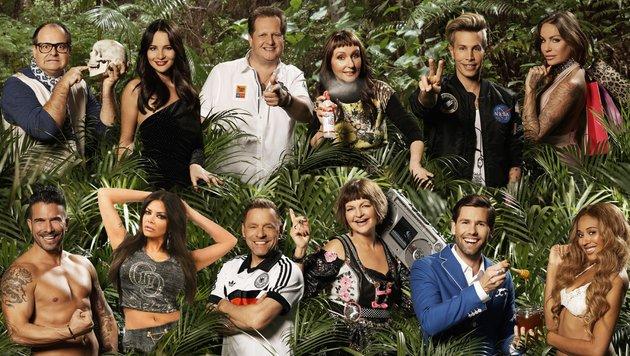 Die zwölf Kandidaten des Dschungelcamps 2017! (Bild: RTL /Stempell/Skowski)