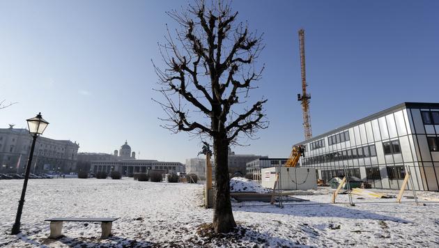 Heldenplatz: Parlamentarier verbauen Wiens Herz (Bild: Klemens Groh)