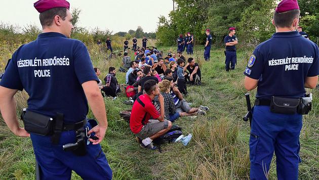 Flüchtlinge und Polizisten an der ungarisch-serbischen Grenze (Bild: APA/AFP/ATTILA KISBENEDEK (Archivbild))