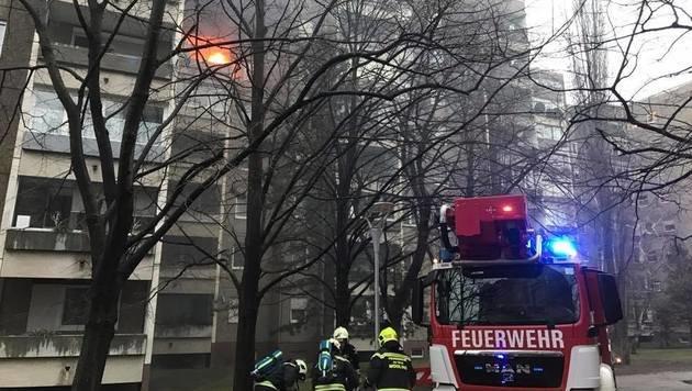 NÖ: Zwölf Bewohner aus Flammen gerettet (Bild: APA/WWW.FF-WR-NEUDORF.AT)
