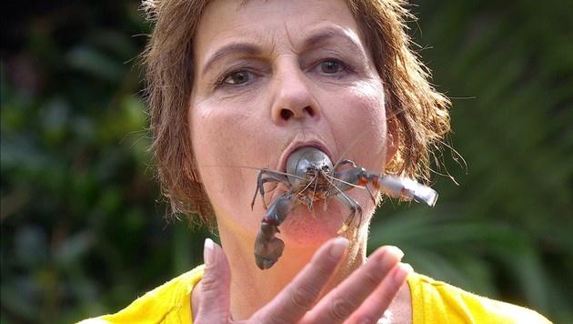 Frau Menke bei der Dschungelprüfung (Bild: RTL)