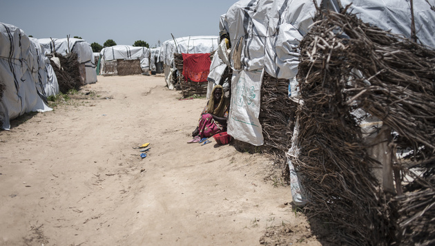Ein Flüchtlingslager in der Stadt Maiduguri (Bild: AFP)