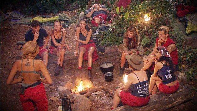 Die Dschungelcamper am Lagerfeuer (Bild: RTL)