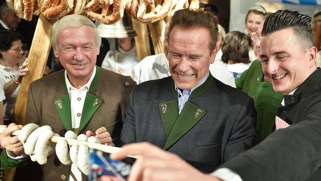 Diese Party war den VIPs nicht wurscht (Bild: APA/HERBERT NEUBAUER)