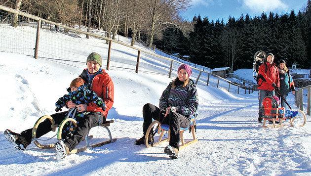 Mit Rodeln geht es durch die verschneite Landschaft. (Bild: Marion Hörmandinger)