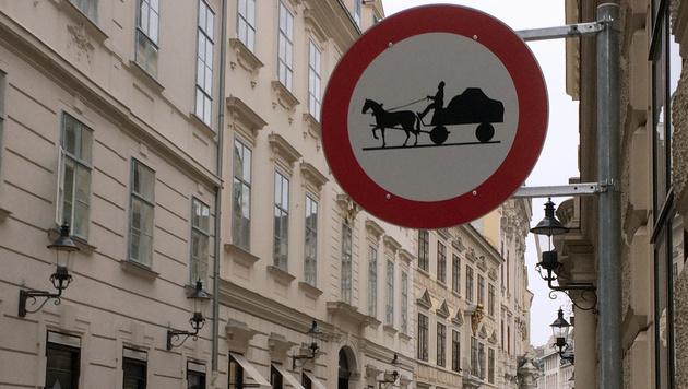 Fahrverbot für Pferdefuhrwerke in der Wiener Herrengasse (Bild: APA/GERALD MACKINGER)