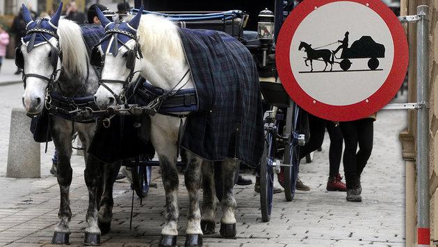 Wiener Herrengasse ab jetzt für Fiaker tabu (Bild: APA/HERBERT PFARRHOFER, APA/GERALD MACKINGER)