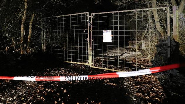 D: Sechs tote Teenager in Gartenhaus entdeckt (Bild: AFP)