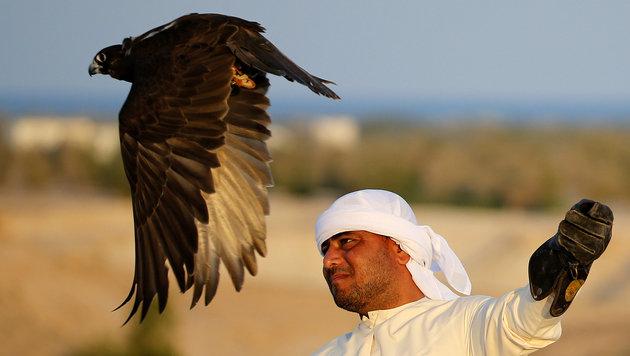 Ein Falkner beim Training (Bild: AFP)