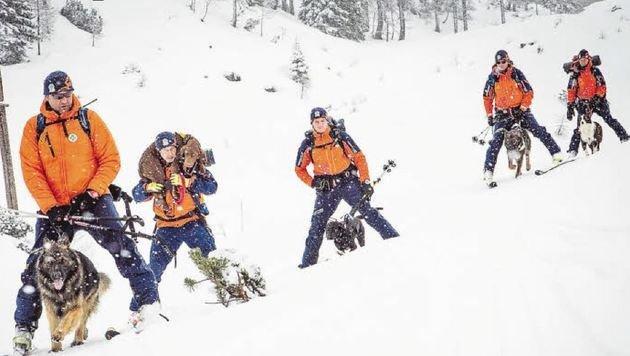 Bergretter mit ihren Lawinensuchhunden im Einsatz: Im Vorjahr rückten die Helfer 575-mal aus. (Bild: Bergrettung Salzburg/Coen Weesje)