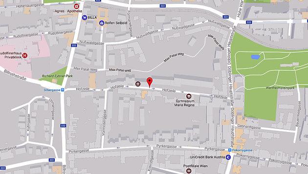 In der Hofzeile im Wiener Bezirk Döbling spielte sich das Drama ab. (Bild: Screenshot googlemaps.com)