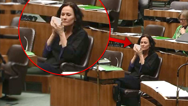 Parteichefin Glawischnig schminkte sich minutenlang im Nationalrat. (Bild: ORF)