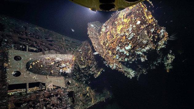 Naturfilmer finden U-Boot-Wrack aus 2. Weltkrieg (Bild: Rebikoff-Niggeler-Stiftung)