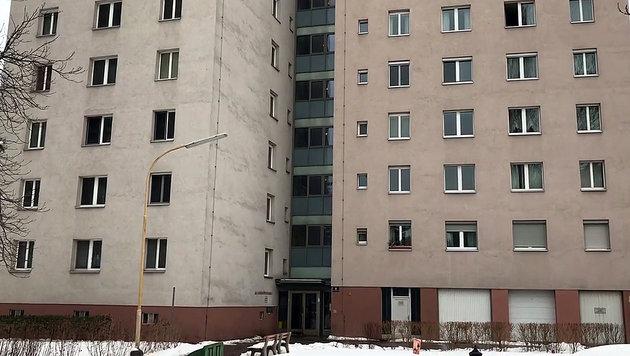 In diesem Gemeindebau im Bezirk Donaustadt kam es zum Überfall. (Bild: Andi Schiel)