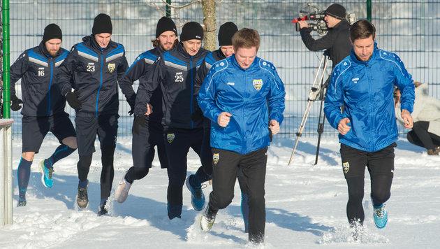 Altachs Neo-Coach Scherb: So wird man noch besser (Bild: APA/DIETMAR STIPLOVSEK)