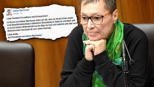 Gesundheitsministerin Oberhauser wieder im Spital (Bild: APA/ROLAND SCHLAGER, facebook.com)