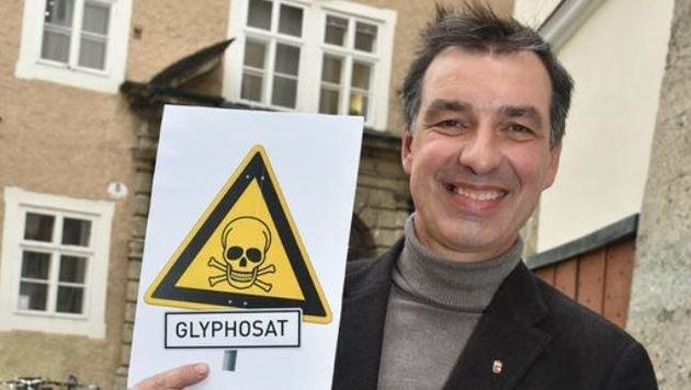 Grün-Politiker Rupert Fuchs ist die Salzburger Speerspitze im Kampf gegen das Glyphosat. (Bild: Wolfgang Weber)