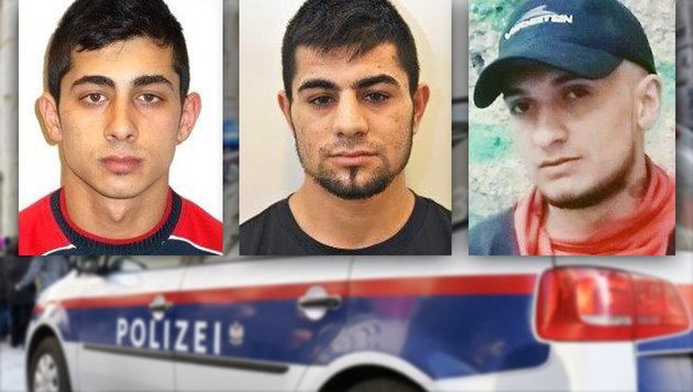 Sechs brutale Räuber von Polizei geschnappt (Bild: APA/HANS PUNZ, LPD NÖ)