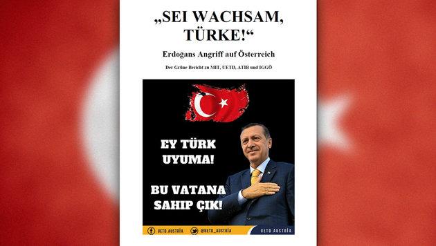 """Wie Erdogan Österreich als """"Brückenkopf"""" nutzt (Bild: thinkstockphotos.de, Grüne)"""
