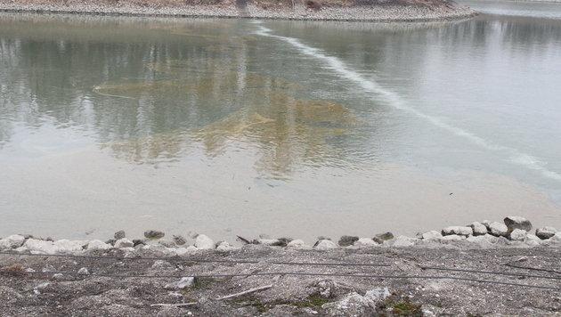 Ölaustritt: Weiter Umweltalarm in der Wiener Lobau (Bild: Andi Schiel)