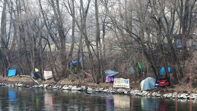Das Camp der Aktivisten: Etwa 40 haben die Nacht von Mittwoch auf Donnerstag an der Mur verbracht. (Bild: Sepp Pail)