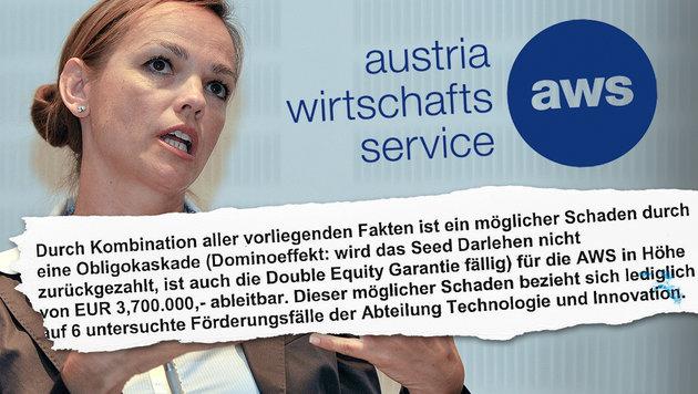 """Steuermillionen kassiert - und ab in den Konkurs! (Bild: APA/Herbert Neubauer, aws, """"Krone"""")"""