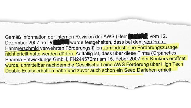 """Steuermillionen kassiert - und ab in den Konkurs! (Bild: """"Krone"""")"""