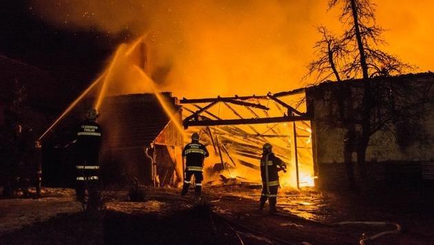 Großeinsatz: Brennholz-Lager ging in Flammen auf (Bild: Einsatzdoku.at)