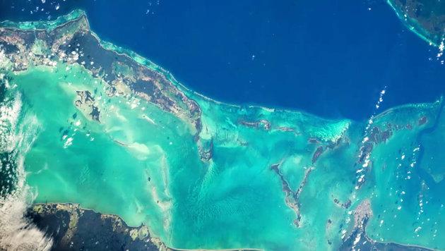 Ein Teil des Belize Barrier Reef vor Belize vom Weltall aus gesehen (Bild: NASA/Jeff Williams)