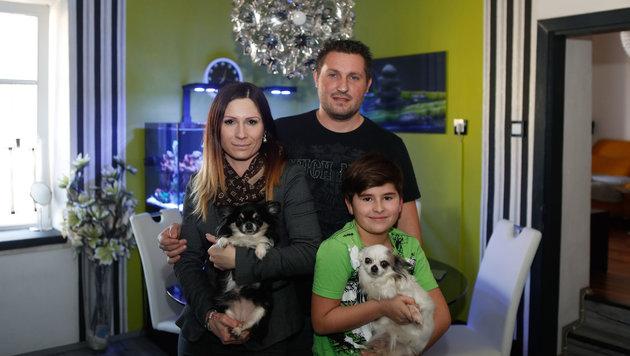 """Chihuahua """"Chloe (links) rettete seine Familie vor dem Ersticken (Bild: Pressefoto Scharinger © Daniel Scharinger)"""