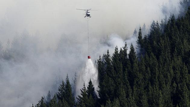 Neuseeland: Tausende auf Flucht vor Buschfeuer (Bild: Associated Press)