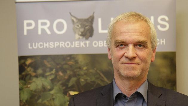 """Beim Land OÖ leitet Gottfried Schindlbauer die Abteilung Naturschutz, ist für den Luchs """"zuständig"""" (Bild: Markus Schütz)"""