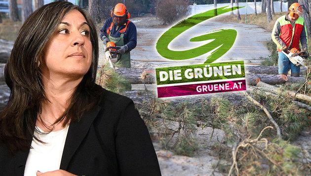 Wie grün sind eigentlich noch die Wiener Grünen? (Bild: APA/Helmut Fohringer, Zwefo)