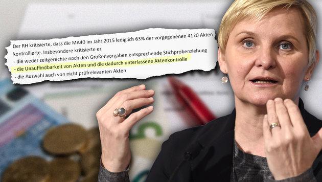 Die 5 schwersten Fehler im rot-grünen Sozialsystem (Bild: Roland Mühlanger, APA/HELMUT FOHRINGER)