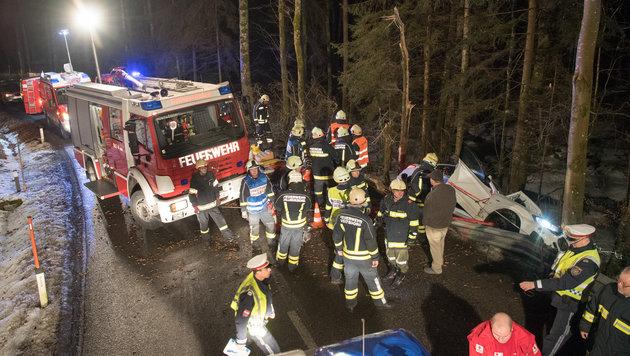 """Der Promillelenker landete in Alberndorf/R. im Wald, """"fällte"""" einen Baum, der ein anderes Auto traf (Bild: fotokerschi.at)"""