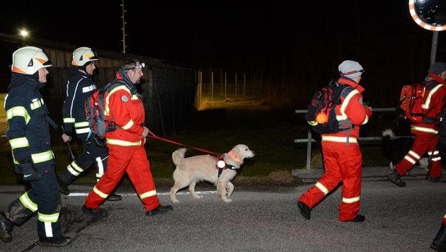 Insgesamt 130 Helfer waren mit Suchhunden drei Stunden im Großeinsatz, um den Lenker zu finden. (Bild: FF Sulzbach)