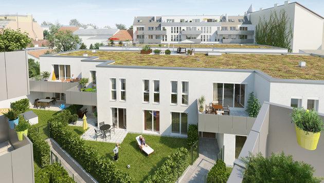 Eigentumswohnungen vor den Toren Wiens (Bild: PMP Immobilien GmbH)