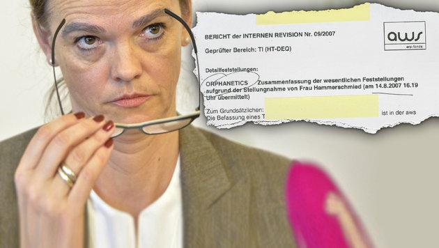 Millionendarlehen: Harte Kritik an Hammerschmid (Bild: APA/HERBERT NEUBAUER)