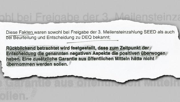 Millionendarlehen: Harte Kritik an Hammerschmid (Bild: Kronen Zeitung)