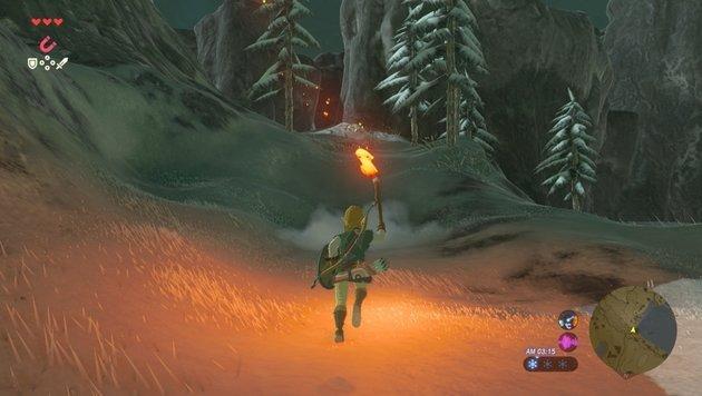 """Open-World-Zelda """"Breath of the Wild"""" im Test (Bild: Nintendo)"""