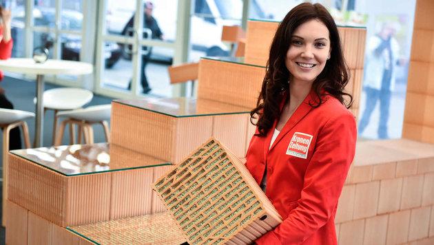 Häuselbauer brauchen Ziegel - und auch hier gibt´s Innovationen bei der Energiesparmesse zu sehen (Bild: Markus Wenzel)